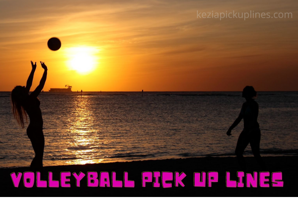 vollybal puns, image, dirty worst lines